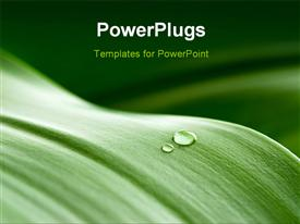 PowerPoint template displaying crystal clear drops on a green leaf in the background.
