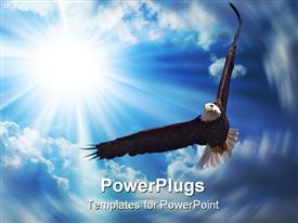 American Bald Eagle in Flight template for powerpoint