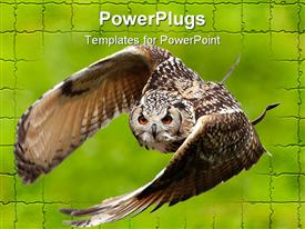 PowerPoint template displaying large brown Owl flying off green brick wall