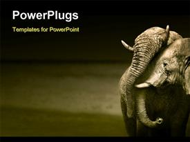 PowerPoint template displaying elephants interacting (Artistic processing) in the background.