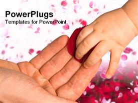 PowerPoint template displaying baby's hand touching rose petals on father's hand