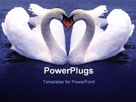 PowerPoint template displaying depiction of two Swan forming love shape over blue background