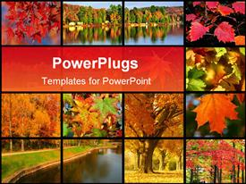 PowerPoint template displaying collage of images representing autumn in the park near a river with autumn leaves and trees