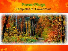 PowerPoint template displaying fall in forest - path and colorful trees