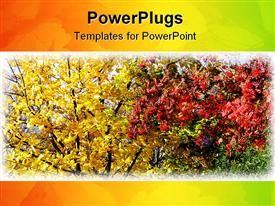 PowerPoint template displaying leaves changing colors in fall, autumn colors