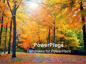 Fall foliage in a ct state part template for powerpoint