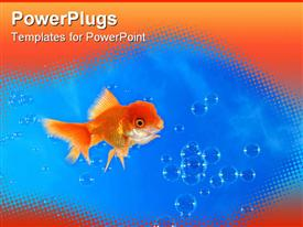 PowerPoint template displaying goldfish in blue water with water bubbles