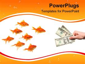Group of goldfish by hand with money powerpoint template
