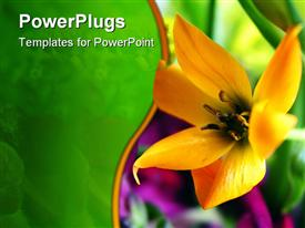 PowerPoint template displaying a flower with greenery in the background