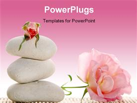 PowerPoint template displaying spa concept - white stones and pink roses in the background.