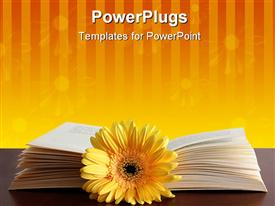 PowerPoint template displaying open book behind yellow flower against striped floral orange background