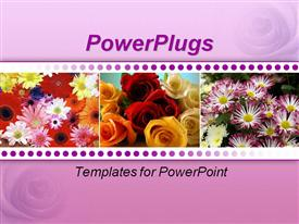 PowerPoint template displaying three tiles showing bunches of different  types and  colors of flowers