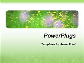PowerPoint template displaying a bunch of flowers with green and white background