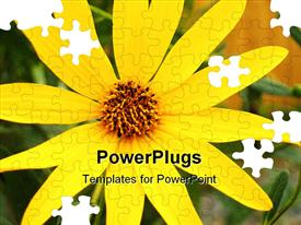 PowerPoint template displaying single pretty Black-eyed Susan with puzzle effect