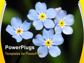 Blue flowers powerpoint theme