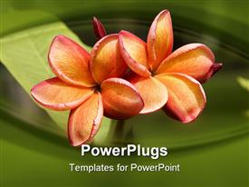 PowerPoint template displaying a pair of flowers with greenish background