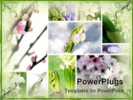PowerPoint template displaying a number of various flowers in boxes
