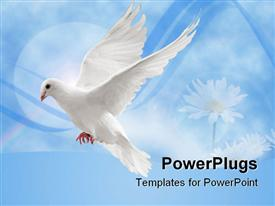 Flying white dove powerpoint design layout