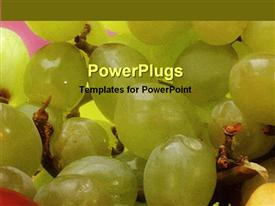 PowerPoint template displaying a number of fresh grapes with pinkish background