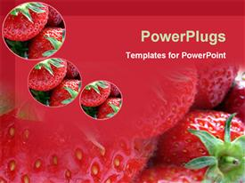 PowerPoint template displaying a number of strawberries with their reflection in the background