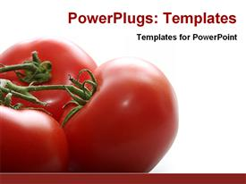Fresh tomatoes template for powerpoint