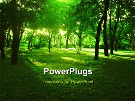 PowerPoint template displaying bright summer forest with green grass and huge trees