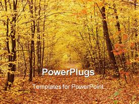 PowerPoint template displaying forest path covered with autumn leaves