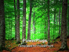 PowerPoint template displaying green Forest and Orange Leaves in Rila Mountain
