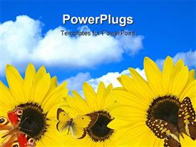 PowerPoint template displaying a number of sunflowers with clouds in the background