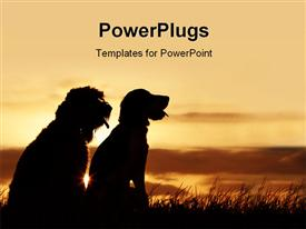 PowerPoint template displaying two dogs of different species sit in grass and watches sunset
