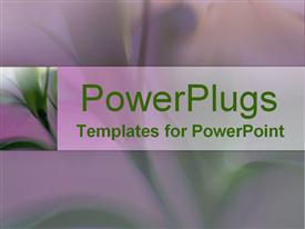 PowerPoint template displaying close-up of beautiful green lily flower with long stems