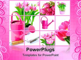 Tulip flowers and watering can powerpoint design layout