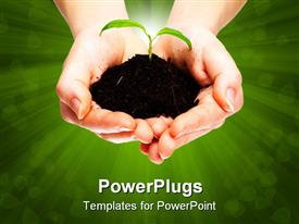 Isolated shot of a fresh shoot growing from a small pile of earth held in hands powerpoint design layout