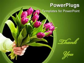 PowerPoint template displaying hand holding pink tulip bouquet, Thank you