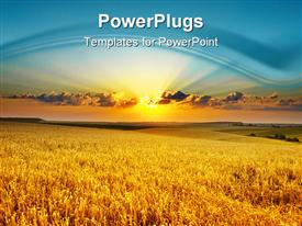 PowerPoint template displaying golden wheat field at sunset with light blue sky and setting sun in the background