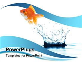 PowerPoint template displaying a beautiful fish and a water splash with clear background
