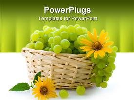 Juicy sweet grapes, useful berry, rich in carbohydrates and vitamins powerpoint design layout