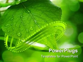 PowerPoint template displaying green leaves reflecting in the water shallow focus