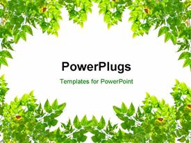 PowerPoint template displaying frame green leaves