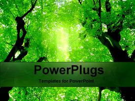 GreenLeaves507 powerpoint template