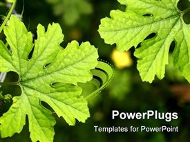 Plant design plants form in nature powerpoint template