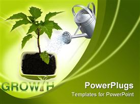 PowerPoint template displaying growing green plant on a white background
