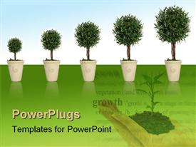 PowerPoint template displaying plant growing through different growth stages