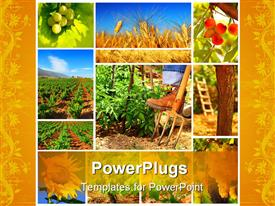 PowerPoint template displaying harvest concept collage with a gardener working on the field in the background.