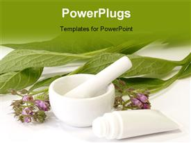 PowerPoint template displaying comfrey plant with mortar and tube on bright background
