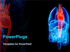 PowerPoint template displaying human organs with a highlighted heart