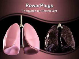 PowerPoint template displaying healthy and bad lungs displayed in shades of purple