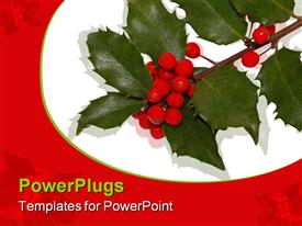 PowerPoint template displaying a number of leaves and berries with white background