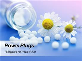 PowerPoint template displaying chamomile flower and homeopathic medication on blue surface