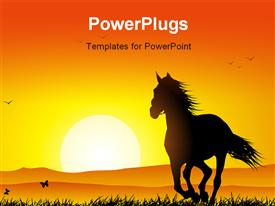 Wild horse running at sunset in a meadow template for powerpoint